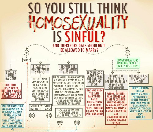 So-You-Still-Think-Homosexuality-is-Sinful-gay-rights-31762611-500-433